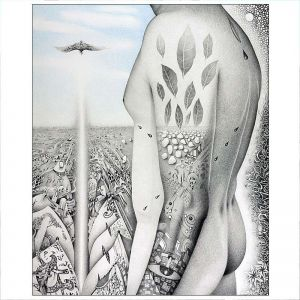 dessin-crayons-Oiseau-musique-2014-68x55-cm-1800-e
